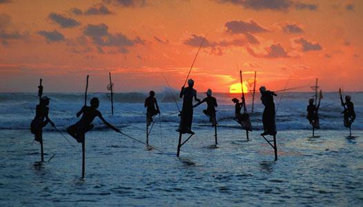sri-lanka-stilt-fisherman